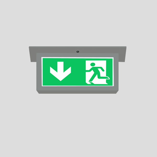 LEDEX Recessed Mounted Grey Exit Sign